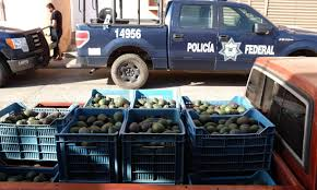 Mexico's Avocado Army: How One City Stood Up To The Drug Cartels ... Sinaloa Cartel Mexican Cartels Now Using Narco Tanks The Washington Post Cartels Archives Mexico Trucker Online Coca Cola Pepsi 7up Drpepper Plant Photosoda Bottle Vending Ghost Recon Narco Road Dlc Truck Off And Die Story Mission Hot Wheels Truck Custom Diecast Boom Box Daily Driver Pictures Camaro Forums Chevy Enthusiast Forum Drug Kgpins Deal With The Us Triggered Years Of Bloodshed Nafta Dot Regulations Insanebbots Profile In Compton Ca Cardaincom Wall Street Journal Stop