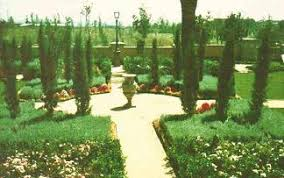 A Tuscan Landscape Design Create Your Own Tuscany