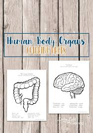 Human Coloring Pages Body Book For Kids Organs