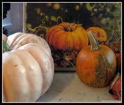 Bishop Pumpkin Farm Wheatland California by Goldcountrycottage Back In The Saddle Again