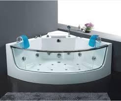 jetted bathtubs for two corner whirlpool jacuzzi kohler tubs