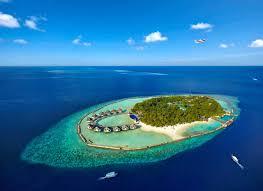 ellaidhoo maldives by cinnamon ari atoll orca