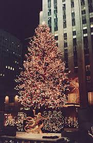 Rockefeller Center Christmas Tree Photographed In December 1987 A 78 Foot 24 M High Norway Spruce Decorated With 18000 Lights