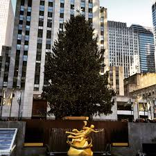 Rockefeller Plaza Christmas Tree Address by Holiday Time In New York City A Winter Wonderland Two
