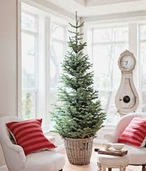 Christmas Tree Disposal Nyc 2016 by Nyc Interior Design Blog Simplifying Fabulous
