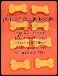 Dog Constipation Treatment Pumpkin by Pumpkin Dog Treat Recipes To Get Your Pup Excited About Fall