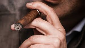 light it up how to smoke a cigar properly culture vices the