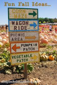 Bobs Pumpkin Patch Snohomish by 477 Best Fall Ya U0027ll Images On Pinterest Pumpkin Patches