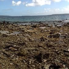100 Million Dollar Beach LeeAnn Heringer Flickr