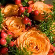 Cahuenga And Riverside Pumpkin Patch by Toluca Lake Florist 84 Photos U0026 75 Reviews Florists 10601
