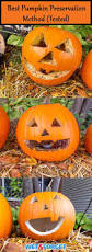 Keep My Pumpkin From Rotting by Ask Wet U0026 Forget Pumpkin Preservation 2016 Ask Wet U0026 Forget
