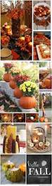 Carvable Craft Pumpkins Wholesale by 218 Best Fall Images On Pinterest Fall Flowers And Autumn
