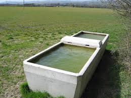 Horse Water Trough Bathtub by Cow Through For Cattle U2014 Farmhouse Design And Furniture