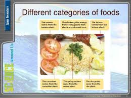 module cuisine uss module 5 chpt 6 sources of food