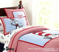 Cheerful Cat In The Hat Bedroom Decor Party