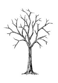 Free Good Drawing Pics Bare Tree Detail Description