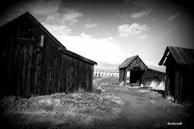 Photography: Lone Pine Tree Indian Village Barn | SwittersB ... Scary Dairy Barn 2 By Puresoulphotography On Deviantart Art Prints Lovely Wall For Your Farmhouse Decor 14 Stunning Photographs That Might Inspire A Weekend Drive In Mayowood Stone Fall Wedding Minnesota Photographer Memory Montage Otography Blog Sarah Dan Wolcott Oregon Rustic Decor Red Photography Doors Photo 5x7 Signed Print The Briars Wedding Franklin Tn Phil Savage Charming Wisconsin Farmhouse Sugarland Upcoming Orchid Minisessions Atlanta Child