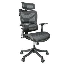 Ergonomic Office Kneeling Chair For Computer Comfort by Fancy Ergonomic Desk Chair Photos U2013 Trumpdis Co