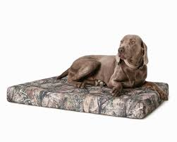 Top Rated Orthopedic Dog Beds by Best Orthopedic Dog Beds Korrectkritterscom
