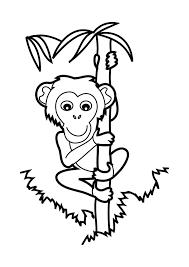 Coloriage Bébé Chimpanzé à Imprimer Et Colorier