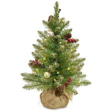National Tree Company 2 Ft Glittery Gold Dunhill Fir Artificial Christmas With Battery Operated