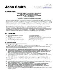 Resume Examples Vice President Finance Also Accounting