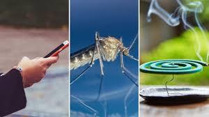 insekten der große anti mücken guide zeit