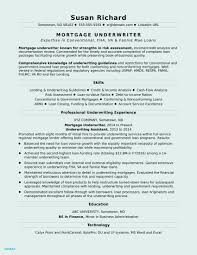 10 Entry Level Resume Skills Collection | Resume Database Template