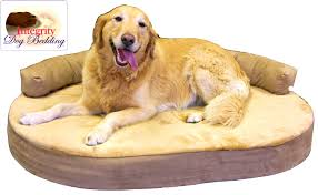 Wayfair Dog Beds by Bedroom Heavenly Orthopedic Dog Beds For Great Danes Walmart Bed