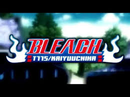 MAD Bleach Opening 14