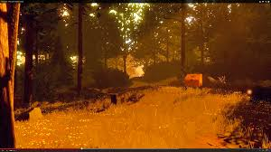 """Campo Santo Releases The First Trailer To """"Firewatch"""" At PAX 2014"""