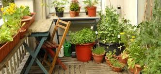jardins et terrasses potager de balcon pots votre complément