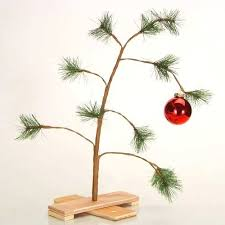 Timely Disposal Of Christmas Trees And Safe Removal Of Lights May