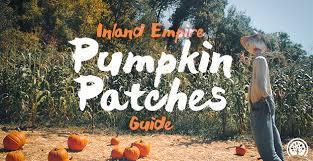 Pumpkin Patch Farm Temecula by Inland Empire Pumpkin Patches Ieshineon
