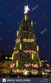 The Biggest Christmas Tree In World At Market Dortmund Ruhrgebiet Area