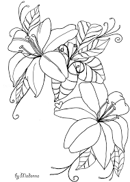 Flowers Line Drawing Stock By Madonnakp89deviantart On DeviantART