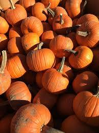 Hamilton Ohio Pumpkin Festival by Cardboard Clubhouse October 2016