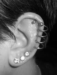 fraidy cats piercing fraidy cats professional piercing 1319 ave maplewood