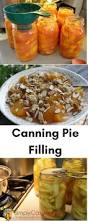 Water Bath Canning Pumpkin Puree by 17 Best Images About All Things Canning On Pinterest Water Bath