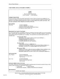Volunteer Resume Summary Examples Free Templates Template Cv