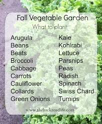 The Backroad Life Fall Ve able Garden when to and what to plant