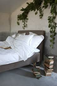 Love This Bedroom Decor With Ivy Plant Istandarddesign