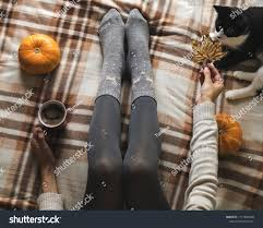 100 Foot Cozy Womens Hands Feet Sweater Woolen Stock Photo Edit Now