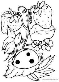 Ladybird Animal Coloring Pages 5 Clever E51e4d748d96c6d12acaefb745c4812f