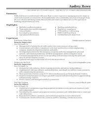 Cover Letter Examples For Law Enforcement Jobs Police Officer Large Resume Template Security Entry Collection Of