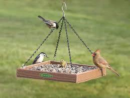 Duncraft Duncraft 3005 Eco Friendly Hanging Platform Bird Feeder