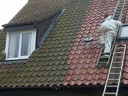 tips in roof painting credit advice 24