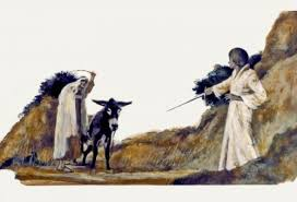 Old Testament 16