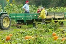 Pumpkin Patch Chesapeake Va by Pumpkin Patch Guide For Richmond U0026 Beyond Richmond Mom