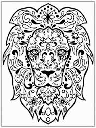 Images Of Photo Albums Lion Head Coloring Pages